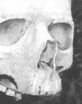 Рисунок 2. Деталь рисунка 1, показывающая левую нижнюю носовую раковину