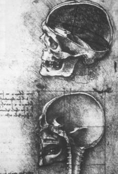 Рисунок 5. Гравюра Georg Thomas, 1536 (из Herrlinger, 1981)